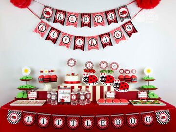 A16a_BIRTHDAY_LADYBUG_PARTY_01